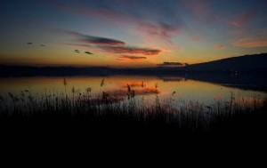 lago-di-pusiano-giovanni-zanardi