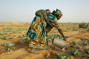 Coltivare-il-cambiamento-il-futuro-delle-donne-in-agricoltura_article_full_l